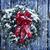 sempre-viva · natal · inverno · coroa · enforcamento · velho - foto stock © stephaniefrey