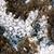 korall · textúra · Vörös-tenger · víz · hal · kék - stock fotó © stephankerkhofs