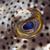 szem · víz · hal · kék · élet · trópusi - stock fotó © stephankerkhofs