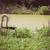 président · domaine · plastique · herbe - photo stock © stepstock