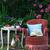 расслабляющая · роз · саду · книга · чтение · питьевой - Сток-фото © stickasa