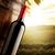 vörösbor · naplemente · szemüveg · gyönyörű · tengerpart · égbolt - stock fotó © stokkete