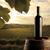 gün · batımı · gözlük · güzel · plaj · gökyüzü - stok fotoğraf © stokkete