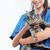 ветеринар · стетоскоп · кошки · клинике · медицина - Сток-фото © stokkete