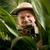 ontdekkingsreiziger · fotograaf · verbergen · vegetatie · foto's - stockfoto © stokkete