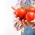 tomates · mãos · vermelho · videira · branco · jardim - foto stock © stokkete