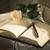 ハンモック · 麦わら帽子 · 図書 · 紙 · 春 · 草 - ストックフォト © stokkete