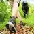 nordic walking legs in mountains stock photo © stokkete