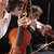 violinist woman stock photo © stokkete
