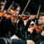 violin orchestra performing stock photo © stokkete