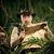 perdido · explorador · mapa · jovem · selva - foto stock © stokkete
