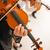 hegedű · játékosok · előad · profi · férfi · játékos - stock fotó © stokkete