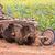 oude · boerderij · trekker · grasveld · klaar · borgtocht - stockfoto © stoonn