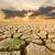 forró · naplemente · víztükör · tájkép · tenger · óceán - stock fotó © stoonn