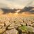 干ばつ · 土地 · 日没 · 地球温暖化 · 水 - ストックフォト © stoonn