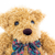 close up teddy bear portrait on white stock photo © stoonn