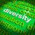 diversity word cloud shows multicultural diverse culture stock photo © stuartmiles