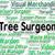médicos · trabajo · grupo · mirando · portátil · Screen - foto stock © stuartmiles