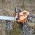 chain saw stock photo © suljo