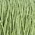 green nylon Rope texture pattern stock photo © supersaiyan3