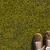 grama · motor · parque · primavera · campo - foto stock © supertrooper
