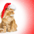 big ginger cat in santa cap looking the side stock photo © svetography