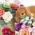 güzel · iç · tavşan · çok · güzel · kırmızı · çiçekler - stok fotoğraf © svetography