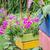 jardim · natureza · parque · folha · verão · verde - foto stock © sweetcrisis