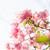 papír · virágok · kert · természet · park · tavasz - stock fotó © sweetcrisis