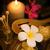 ingesteld · spa · kaarsen · bloemen · therapie · orchidee - stockfoto © szefei