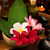 spa · still · life · aromatique · bougies · fleur · froid - photo stock © szefei