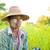 традиционный · зрелый · Мьянма · женщины · фермер · вид · сбоку - Сток-фото © szefei