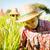 falu · farm · állat · gyapjú · közelkép · gazdálkodás - stock fotó © szefei