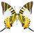 swordtail butterfly stock photo © szefei