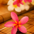 naturalismo · amarelo · estância · termal · natureza · bem-estar · flores · silvestres - foto stock © szefei