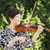 senior asian woman playing violin outdoors stock photo © tab62