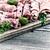 różny · surowy · pokładzie · rustykalny - zdjęcia stock © tab62