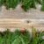 natal · fronteira · pinheiro · ramo · vermelho - foto stock © tab62