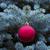 evergreen · albero · palla · ramoscello · felice - foto d'archivio © tab62
