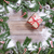 oddziału · dekoracje · szkatułce · odizolowany · biały - zdjęcia stock © tab62