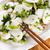 étel · Kína · disznóhús · rizs · finom · száj - stock fotó © tab62