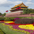 forbidden city temple and flowers stock photo © tab62