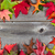 border of autumn leaves on aged wood stock photo © tab62