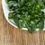 kínai · zöldség · kettő · felső · kilátás · izolált - stock fotó © tab62