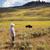 campo · grama · floresta · preto · vida · animal - foto stock © tab62