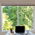 desktop · heldere · daglicht · venster - stockfoto © tab62