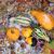 outono · bordo · carvalho · folhas · projeto - foto stock © tab62