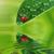 résumé · nature · vert · soleil · flare · monde - photo stock © taden