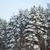 sulama · kış · görüntü · alan · kapalı · kar - stok fotoğraf © taden