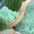 green sea salt stock photo © taden